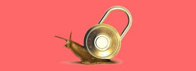 A snail carrying a padlock on its back